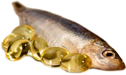 Fish Oil photo